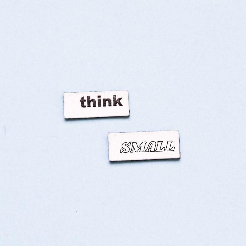 micronichos-think-small